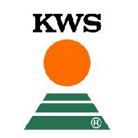 kwalifikowany materiał siewny lubelskie KWS